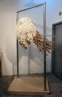 Michael DeLucia, Fence with Mops